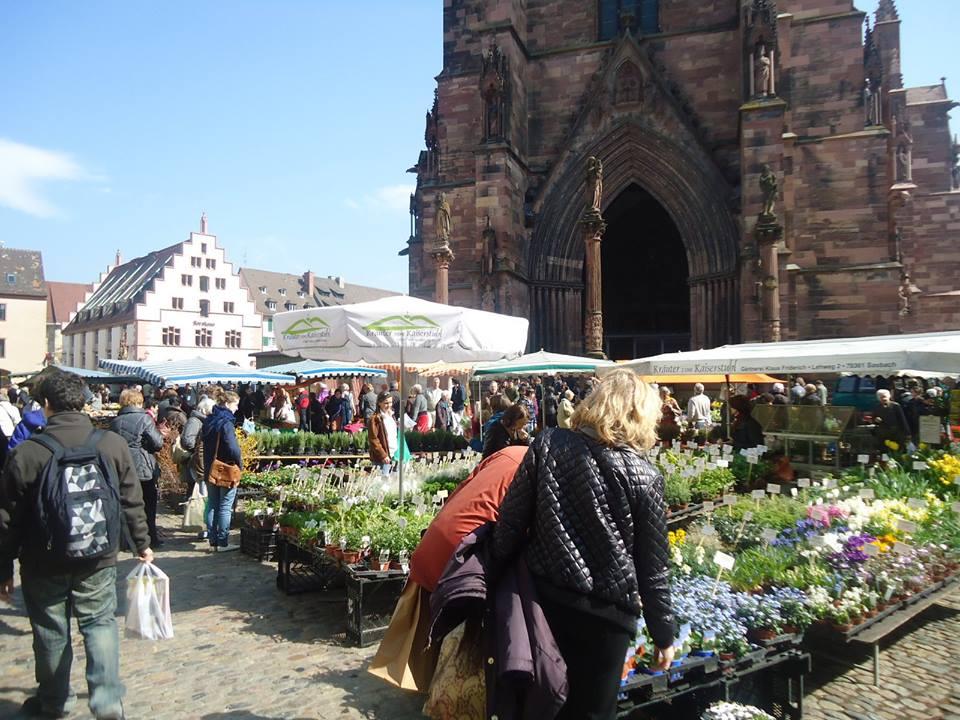 Il mercato cittadino di Munsterplatz